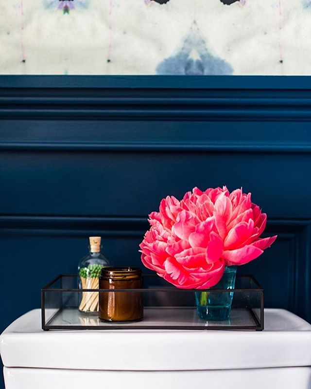 Sneak peek! I found the most gorgeous navy paint color called Opera Glasses from the @BEHRpaint Marquee collection! It is TDF in every way and I can't wait to show you more photos this week.