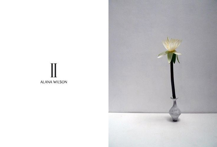 II by Alana Wilson | campaign photography & styling by Simone Gooch