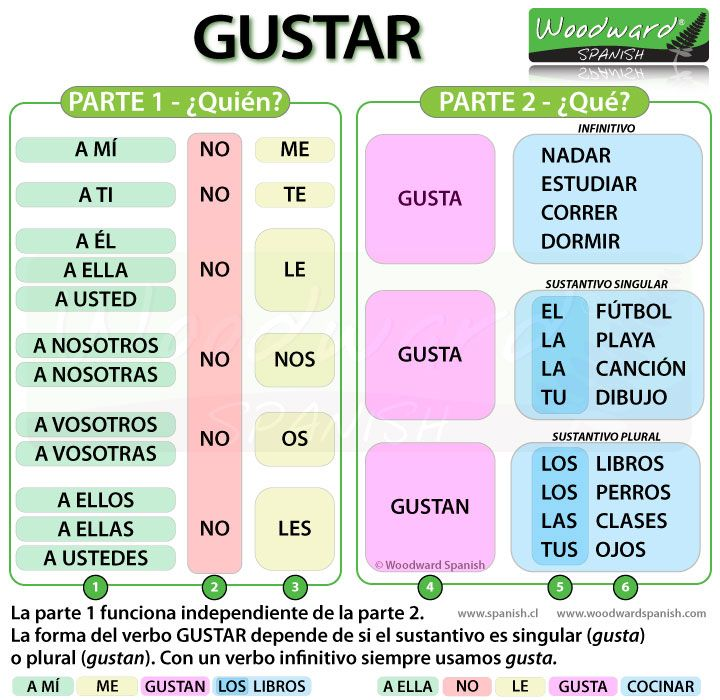 Gustar in Spanish - Sentence Structure and Word Order - How to say you like something in Spanish