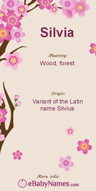 """Meaning of Silvia: Silvia is a feminine variant of the Latin name Silvius, which is derived from the Latin word silva, meaning """"wood, forest"""