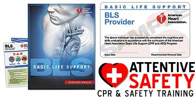 Attentive Safety CPR and Safety Training Basic Life Support (BLS) for Healthcare Providers