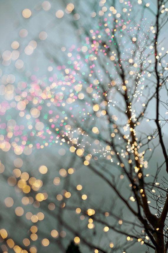 Holiday Fairy Lights in Trees, Festive Winter Scene