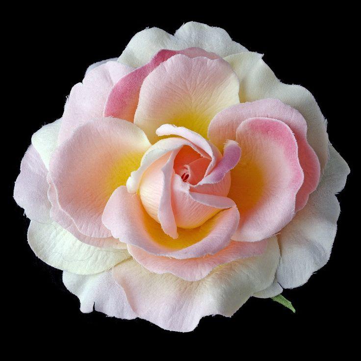 pink sherbet garden rose flower hair clip 415