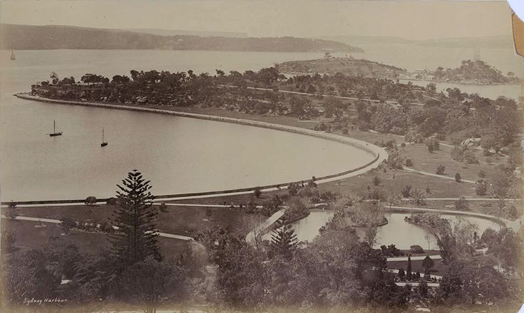 Sydney Harbour from Garden Palace tower 1880.Photo from Dictionary of Sydney.A♥W
