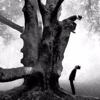 Tom an Al's Blues by A Wood on SoundCloud