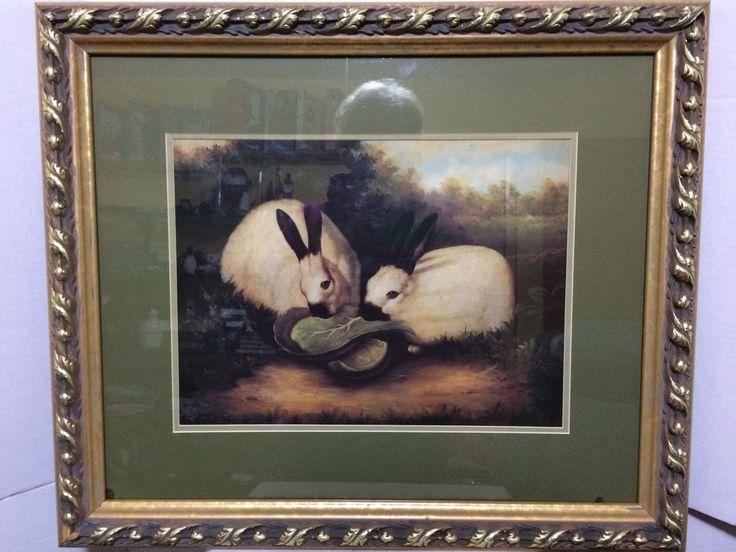 P Rolence Rabbits 117 best secondhanddel...