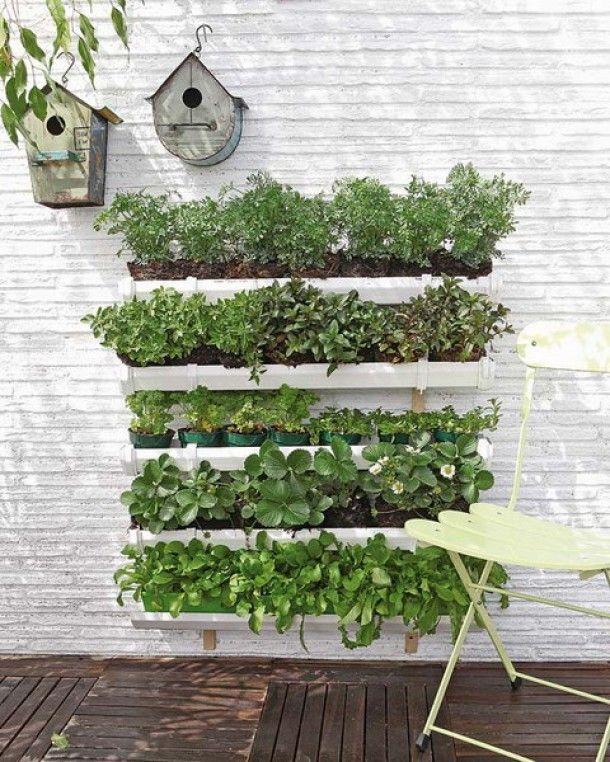 groente en kruiden tuin | laat sla en kruiden kruiden groeien in dakgootjes Door pieneke