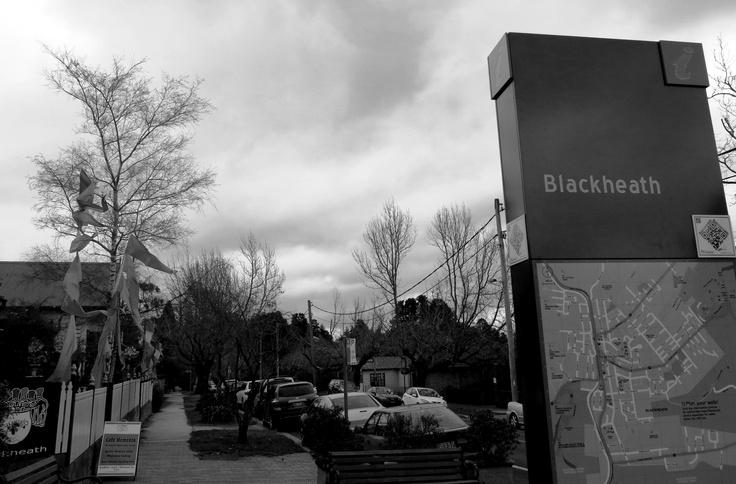 A cold, grey start to winter in Blackheath, NSW