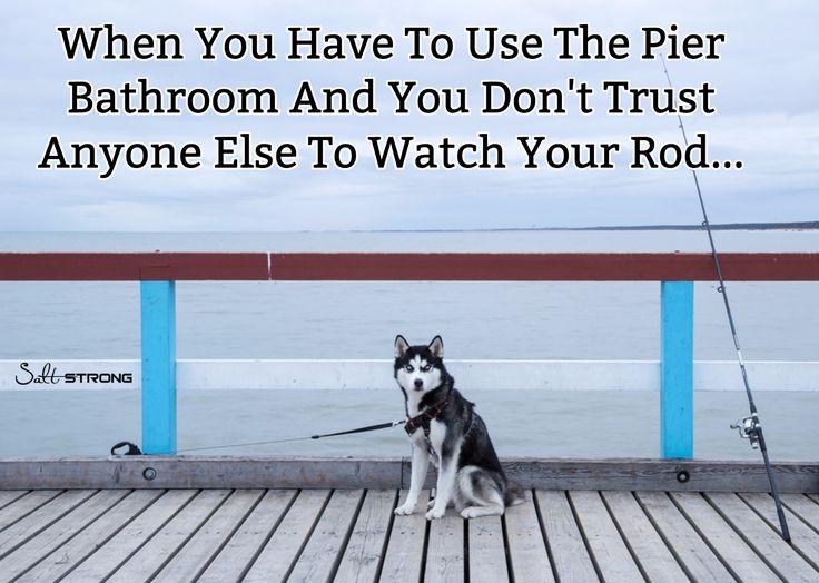 Man's best friend meet fisherman's best friend. Awesome fishing meme of dog on a pier watching a fishing rod.