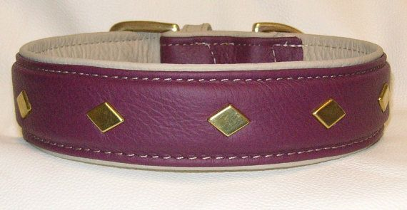 stunning Aubergine on cream  leather dog collar with solid brass fittings by www.etsy.com/uk/shop/newforestcrafts