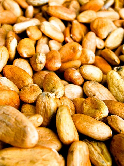 These are cacao beans which have been fermented as the first part of the chocolate making process.