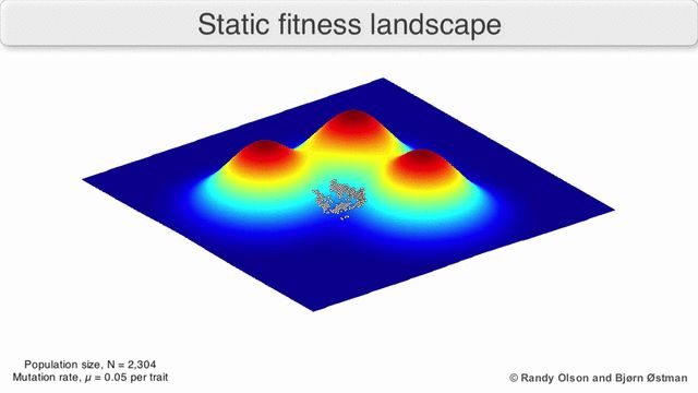 Visualization_of_a_population_evolving_in_a_static_fitness_landscape.gif 640×360 pixels