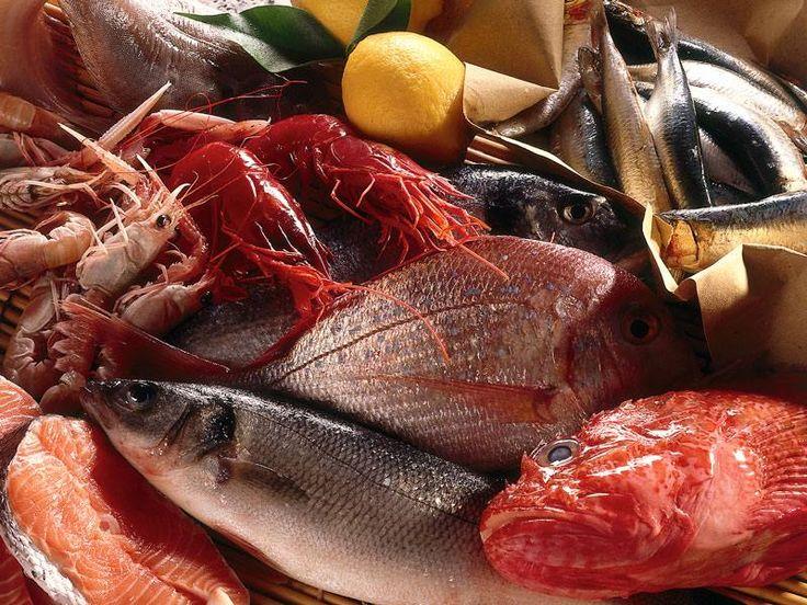 Porticello: la novità che porta il vero sapore di mare a Milano
