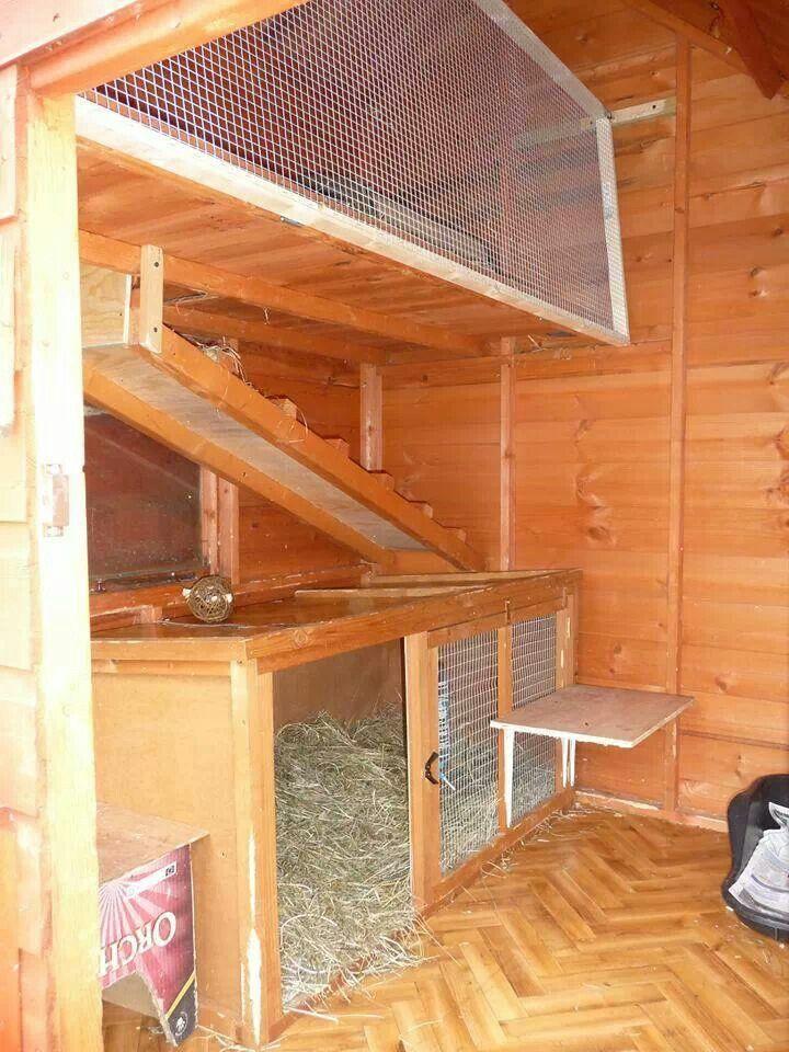 Tips til innredning av kaninhus. Lurt å utnytte plassen i høyden for å gi kaninene større areal å bevege seg på.
