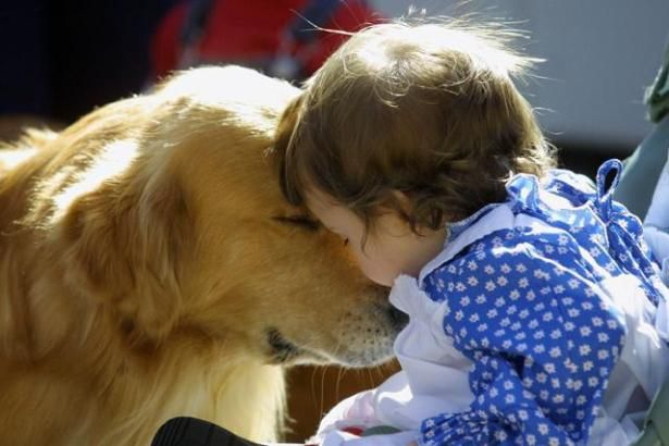 5 Ways Dogs Can Benefit Children With Autism | News, Facts & Other Information You Love - UncoverDiscover.com