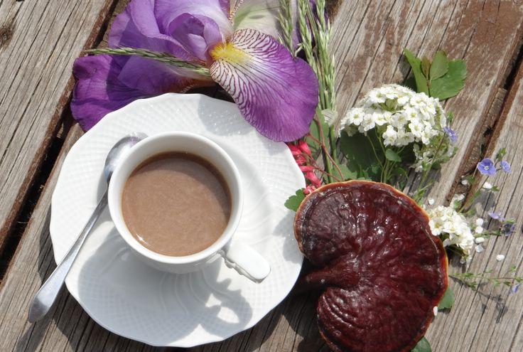 A kávé az egyik legismertebb növény, a belőle készült ital pedig világszerte a legnépszerűbb élvezeti cikk.   A kávé, a kávécserje örökzöld növény termésének a kávébabnak feldolgozott magja. A kávécserje nem terem meg mindenhol. Megfelelő éghajlati körülmények között a Ráktérítő és a Baktérítő...