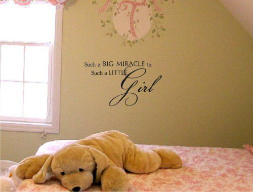 Newsee Decals Such a big miracle in such a little girl Vinyl wall art Inspirational quotes and saying home decor decal sticker by Unique…