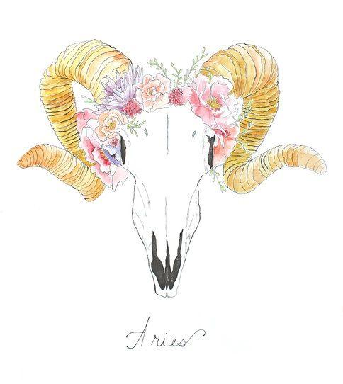 ~ Aries ~