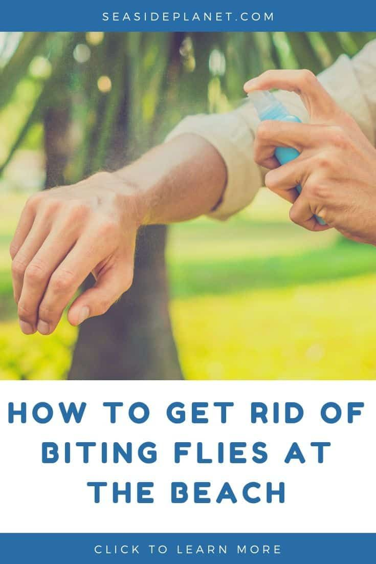 How To Get Rid Of Biting Flies At The Beach In 2020 Fly Repellant Fly Spray Beach Vacation Essentials