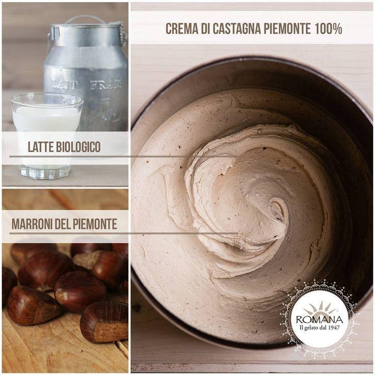 Nel nostro gelato Crema di castagna Piemonte 100% c'è dentro il sapore genuino del latte biologico + tutto il sapore dei marroni del Piemonte.