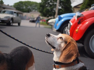 Citroen Rendezvous, Saratoga Springs NY, June 2013 2CV Beagle