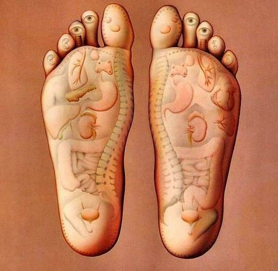 The organs of your body have their sensory touches at the bottom of your foot; if you massage these points you will find relief from aches and pains. This sort of guideline is used in acupuncture and other holistic therapies.