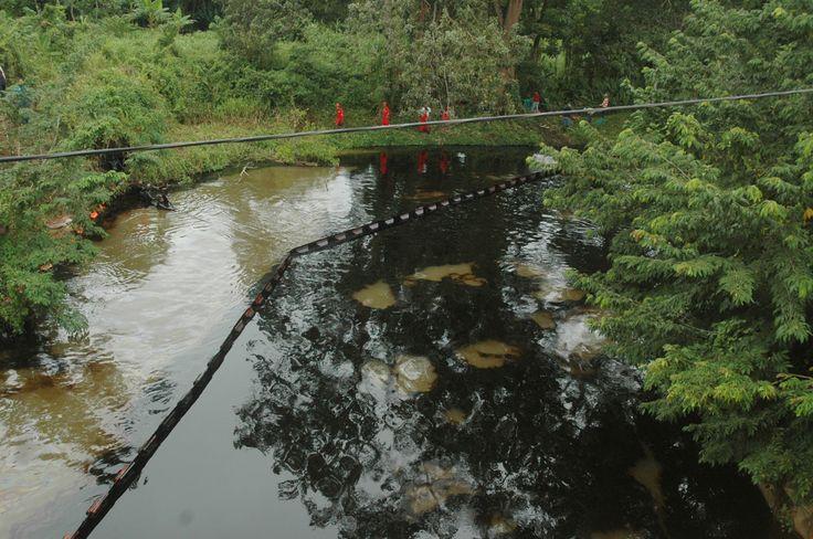 Revisa la posición de la Fundación Azul Ambientalistas ante el derrame de petróleo sin precedentes en el Río Guarapiche de Maturín, Estado Monagas, Venezuela => http://blogdenotas.azulambientalistas.org/?p=330