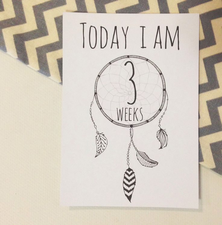 A personal favorite from my Etsy shop https://www.etsy.com/au/listing/293827377/tribal-boho-baby-milestone-cards-photo