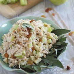 61554d9a79b3c351a6a84d585462ea3c chicken salad with apples apple chicken salads