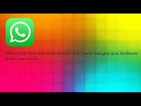 WhatsApp Beta Permite Enviar Gifs Para Amigos Quem Tenha Beta  ♡ ♥