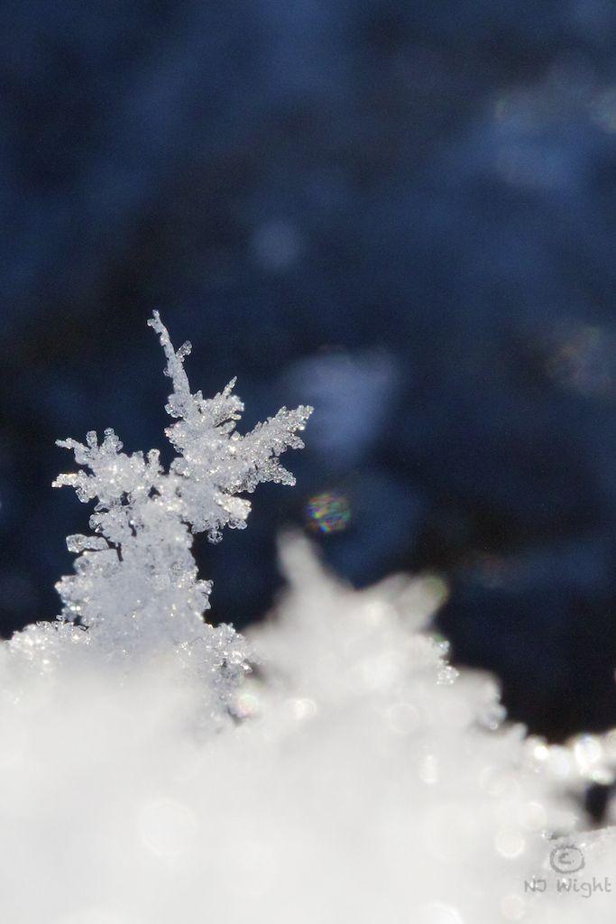 snowflake 617 best Snowflakes images on Pinterest