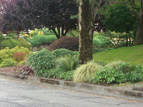 69 Best Sidewalk Planting Ideas Images On Pinterest