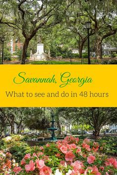 Savannah Georgia - what to see and do in the city with 48 hours. The historic district of Savannah is filled with amazing architecture, beautiiful squares and georgious landmarks to visit in this charming Southern city. Check out my top must do's for visiting Savannah http://travelphotodiscovery.com/visit-savannah-in-48-hours/
