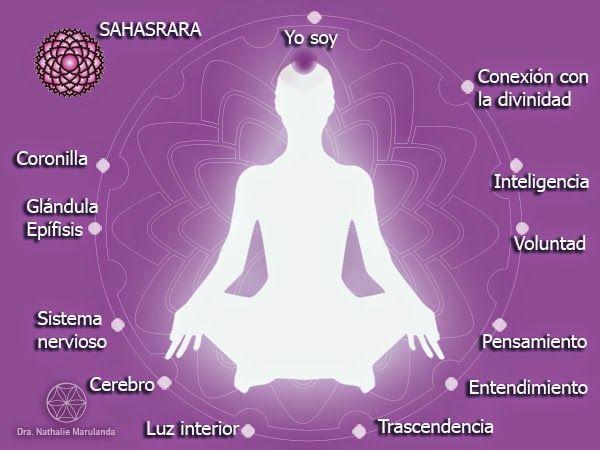 El séptimo chakra: SAHASRARA ~ La Flor de la Vida - Medicina Integrativa.- Es un centro de energía que nos une con nuestro ser, nuestra alma; y es por esta razón que se le conoce como el chakra de la luz. Ubicado en la coronilla, en el punto más alto de la cabeza, se caracteriza por ser un loto de 1000 pétalos. Su apertura nos permite desarrollar el entendimiento, el equilibrio con nuestros aspectos superiores. Alinearnos con nuestro séptimo centro nos ayuda a entrar en resonancia con…