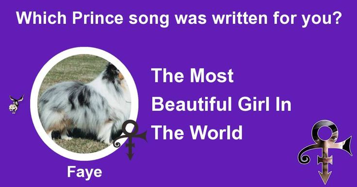 Which Prince song was written for you? | Gag Donkey