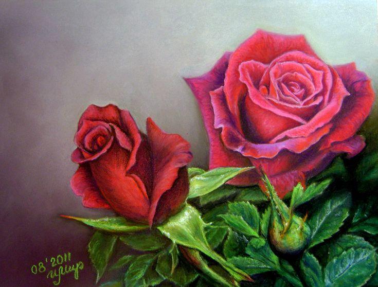 Картинки по запросу dark red rose