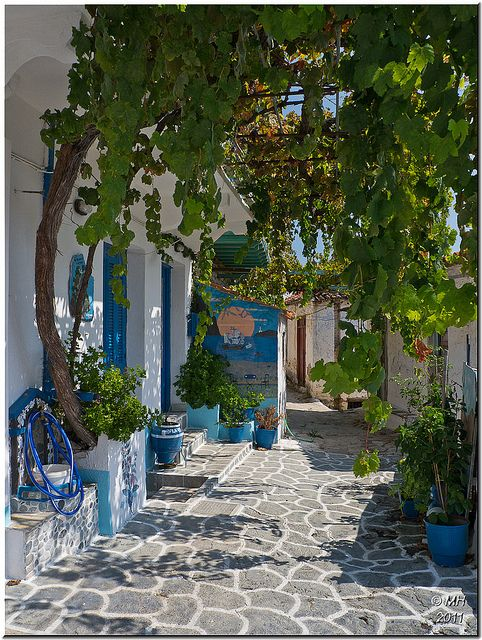 The little town of Glossa sits on the hillside above the port of Loutraki. It is mainly residential and with little concession to tourism. It is full of narrow alleyways and steps, with tubs of flowers decorating the doorsteps, a fascinating place to explore. By Maria-H