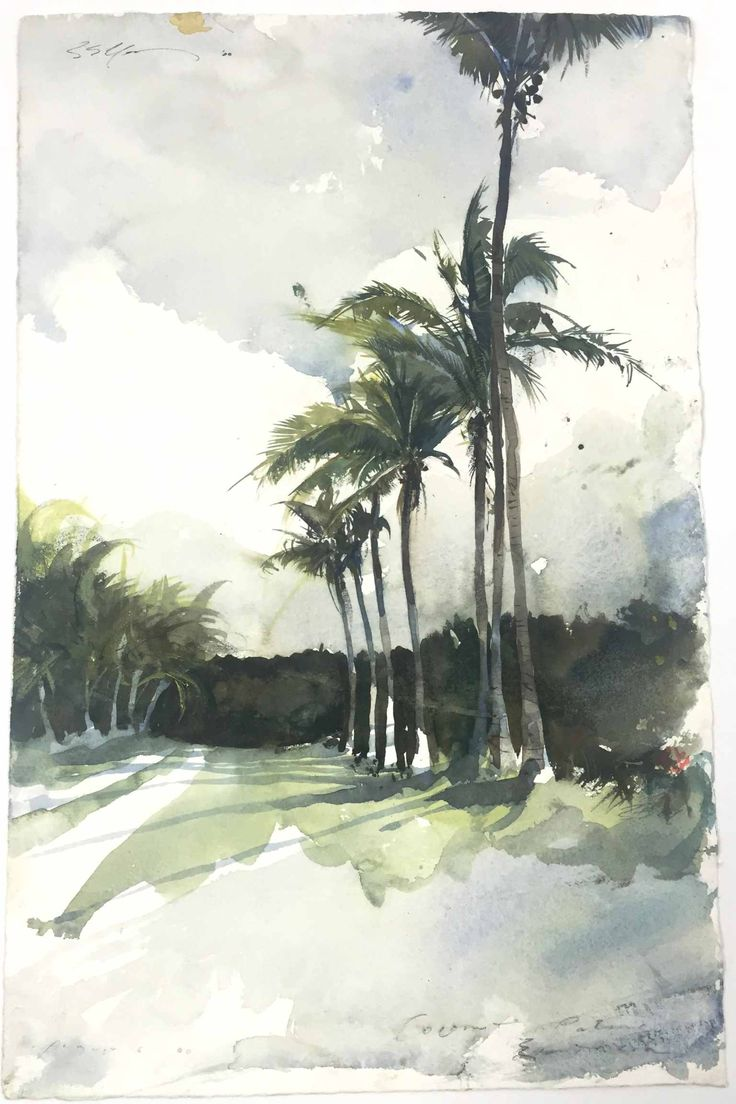 Watercolor artist magazine palm coast fl - Tropical Paintingswatercolor Treeswatercolourlandscape Artpalm