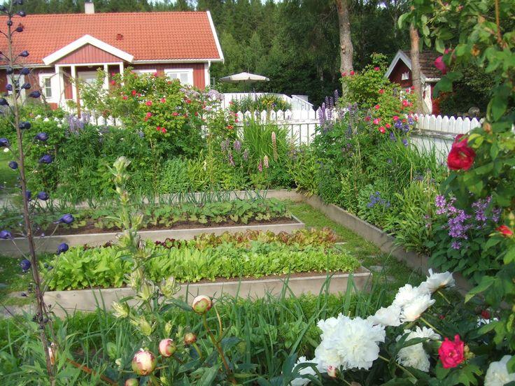 Row Design Potager Garden - Google Search