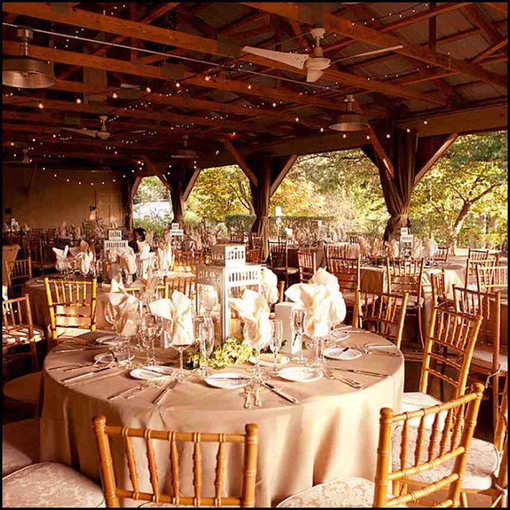 57 best budget wedding ideas images on pinterest budget wedding small backyard wedding ideas on a budget wedding and bridal inspiration junglespirit Gallery