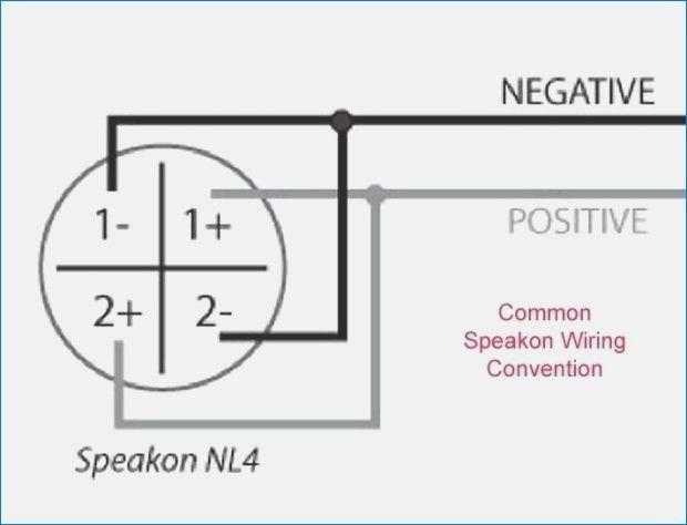 Neutrik Speakon Connector Wiring Diagram Of Speakon Wiring Diagram For Neutrik Speakon Wiring Diagrams Wiring Speakers Positivity Speaker Cable