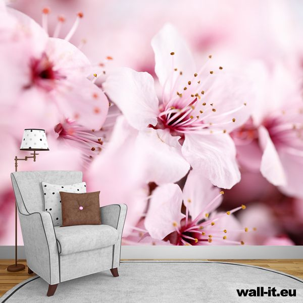 Fototapeta kwiaty.  http://www.wall-it.eu/product/photowallpapers/natura/fototapeta%20wiosenne%20kwiaty.jpg  #fototapeta #fototapety #mural #murals #bedroom #room #sypialnia #aranzacja #flowers #kwiaty #room