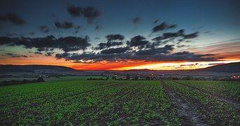 Field, Countryside, Sunset, Sky, Orange