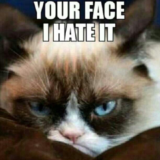 Grumpy Meme Face Your face I hate it | ...