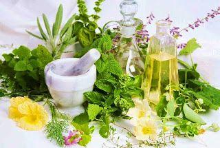 Η ΛΙΣΤΑ ΜΟΥ: 12 βότανα για κάψιμο λίπους καλύτερα και από γυμνα...