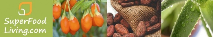 For centuries, goji berries has lead to a dynamic impact on people's health.  This little red berries are commonly grown in the Himalayan valleys of China as well as in the provinces of Xingjiang and Ningxia. They can also be found in Mongolia and Tibet. In china, it is widely combined with tea or as a concoction in various dishes.