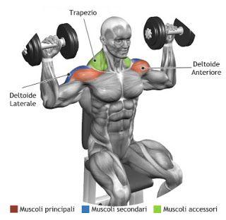 Shoulder Exercises                                                                                                                                                                                 More