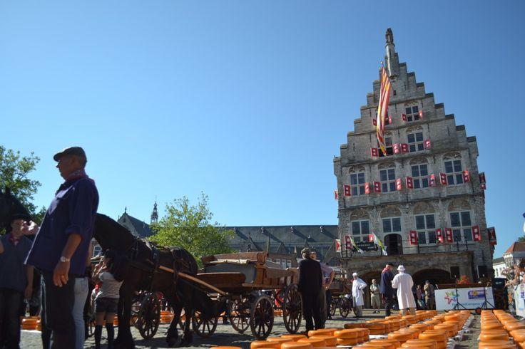 Gouda Cheese Markets