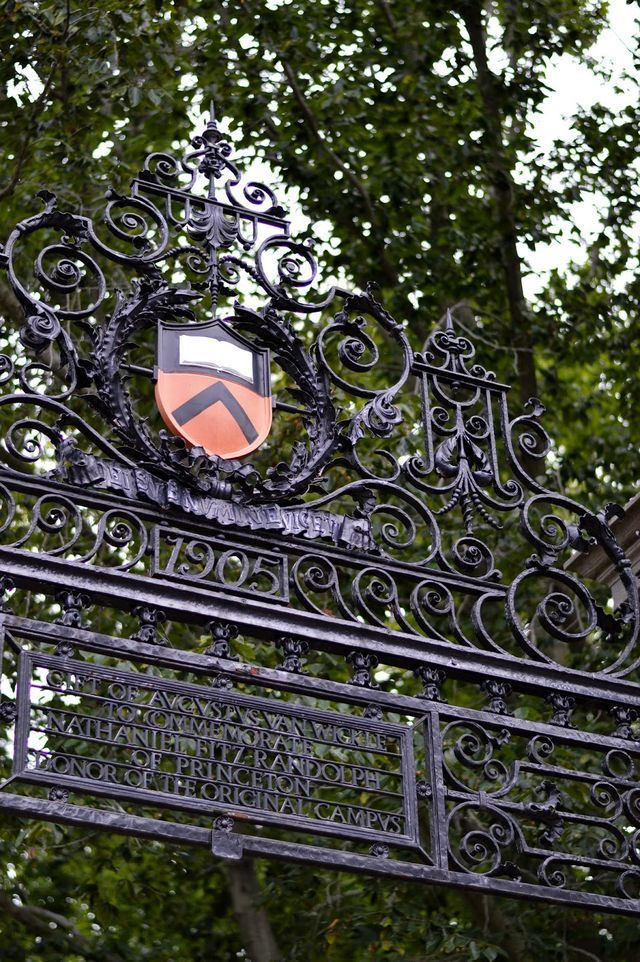 Princeton University is my dream college.. What are the requirements to get in?