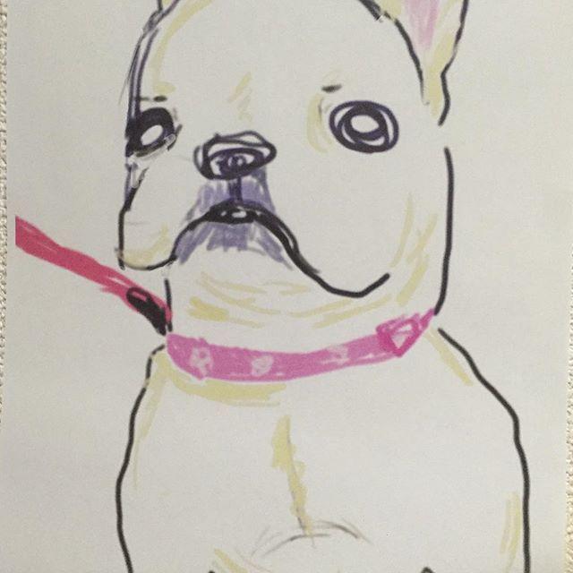パソコンのお絵かきのやつで初めて描いてみた!ごまちゃん描いたww なんか面白い😂 #フレンチブルドッグ#フレブル#フレンチブル#ブサカワ#ブサイク#子犬#鼻ぺちゃ#愛犬#犬#frenchbulldog #french #dogs